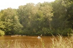 Kanoën in de zomer