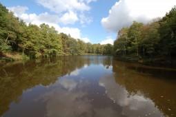 Het vismeer in het begin van de herfst